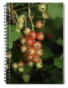 Slightly Underripe Spiral Notebook