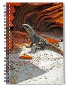 Slinky Spiral Notebook