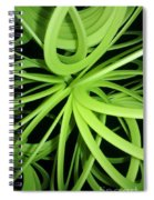 Slinky Web Spiral Notebook