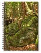 Slippery Rock Creek Bridge Spiral Notebook