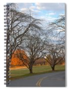 Sloan Park Sunset Spiral Notebook
