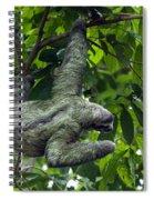 Sloth 8 Spiral Notebook