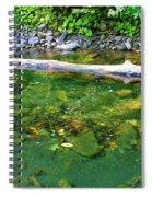Slow Moving Sream Spiral Notebook