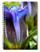 Blue Bliss Spiral Notebook