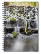 Small Cascade In Marlay Park Spiral Notebook