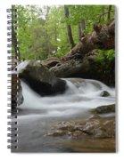 Small Falls Spiral Notebook