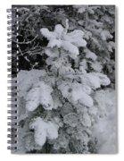 Small Fir Spiral Notebook