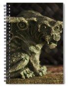 Small Gargoyle Or Grotesque Spiral Notebook
