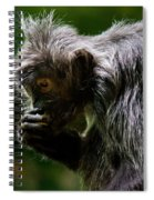 Small Monkey Eating Spiral Notebook