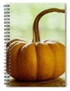 Small Orange Pumpkin Spiral Notebook