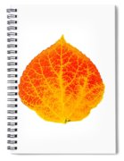 Small Red And Yellow Aspen Leaf 1 - Print Version Spiral Notebook