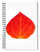 Small Red Aspen Leaf 1 - Print Version Spiral Notebook
