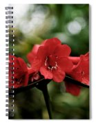 Small Red Flowers Spiral Notebook