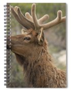 Small Roof Rack Spiral Notebook