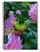 Small Speaks Volumes Spiral Notebook