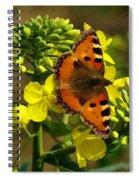 Small Tortoiseshell Spiral Notebook
