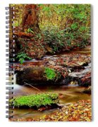 Small Waterfall And Stream 2 Spiral Notebook