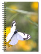 Small White Butterfly On Yellow Flower Spiral Notebook