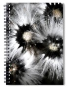 Small Worlds Spiral Notebook