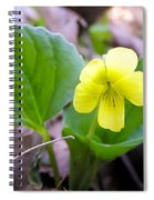 Small Yellow Violet Spiral Notebook