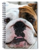 Smashface Spiral Notebook