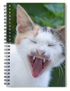 Smile Please Spiral Notebook
