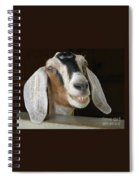 Smile Pretty Spiral Notebook