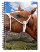 Smile When You Say That Spiral Notebook