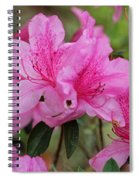 Smiling Azalea  Spiral Notebook