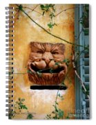 Smiling Cat Mail Box Spiral Notebook