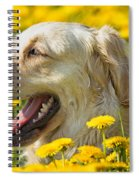 Smiling Dog Spiral Notebook