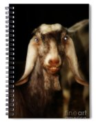 Smiling Egyptian Goat II Spiral Notebook