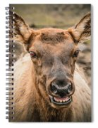 Smiling Elk Spiral Notebook