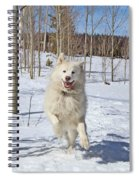 Smiling From Ear To Ear Spiral Notebook