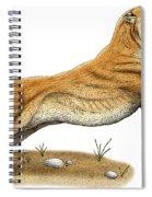 Smilodon Saber-toothed Tiger Spiral Notebook