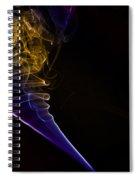 Smokey 12 Spiral Notebook