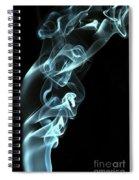 Smokey 8 Spiral Notebook