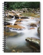 Smokey Mountain Creek Spiral Notebook