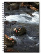 Smokey Mountain Stream In Autumn No.2 Spiral Notebook