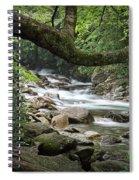Smokey Mountain Stream. No 547 Spiral Notebook