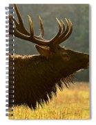 Smoky Mountain Bugle Spiral Notebook