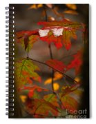 Smoky Mountain Color II Spiral Notebook