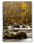 Smoky Mountain Gold II Spiral Notebook