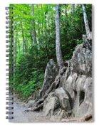 Smoky Mountain Hike Spiral Notebook