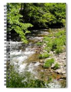 Smoky Mountain Stream Spiral Notebook