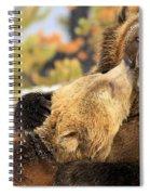 Smooch Spiral Notebook