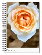 Smooth Angel Rose Spiral Notebook
