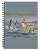 Smooth Collie Trying To Herd Geese Spiral Notebook