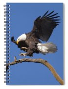 Smooth Landing 6 Spiral Notebook