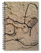 Sn 2 B Spiral Notebook